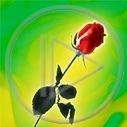 Lg - Dzień kobiet - Kolorowa tapeta nr 2493696