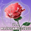 Lg - Dzień kobiet - Kolorowa tapeta nr 2730740