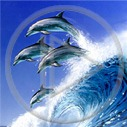 Lg - Delfiny - Kolorowa tapeta nr 2816766
