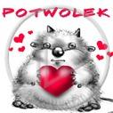 Motorola - Miłość - Moja tapeta nr 2971945