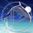 Lg - Delfiny - Kolorowa tapeta nr 3040680