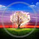 Lg - Pejzaże - Kolorowa tapeta nr 3560809
