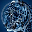 Lg - Zwierzęta - Kolorowa tapeta nr 3566613