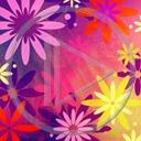 Lg - Kwiaty - Kolorowa tapeta nr 3592013