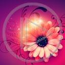 Lg - Kwiaty - Kolorowa tapeta nr 3592884