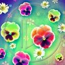 Lg - Kwiaty - Kolorowa tapeta nr 3595390