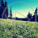 Lg - Nowości - Kolorowa tapeta nr 3598898