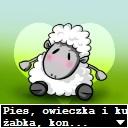 Słodka owieczka